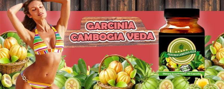 Ingrediente și compoziția capsulelor de ardere a grasimilor Garcinia Cambogia Vedaforum.Cum ar trebui să ia pastile de ?