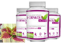 Forskolin Active ce este? Cum Funcționează Acest Supliment Alimentar?