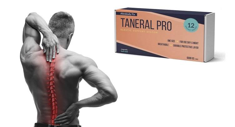 Cât costă Taneral Pro? Cum să comandați de pe site-ul producătorului?